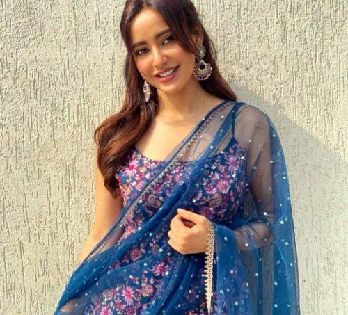 Neha Sharma Net Worth